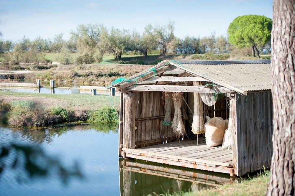 船屋/Emily FitzRoy/Bellini Travel/威尼斯/義大利/奢華訂製旅行
