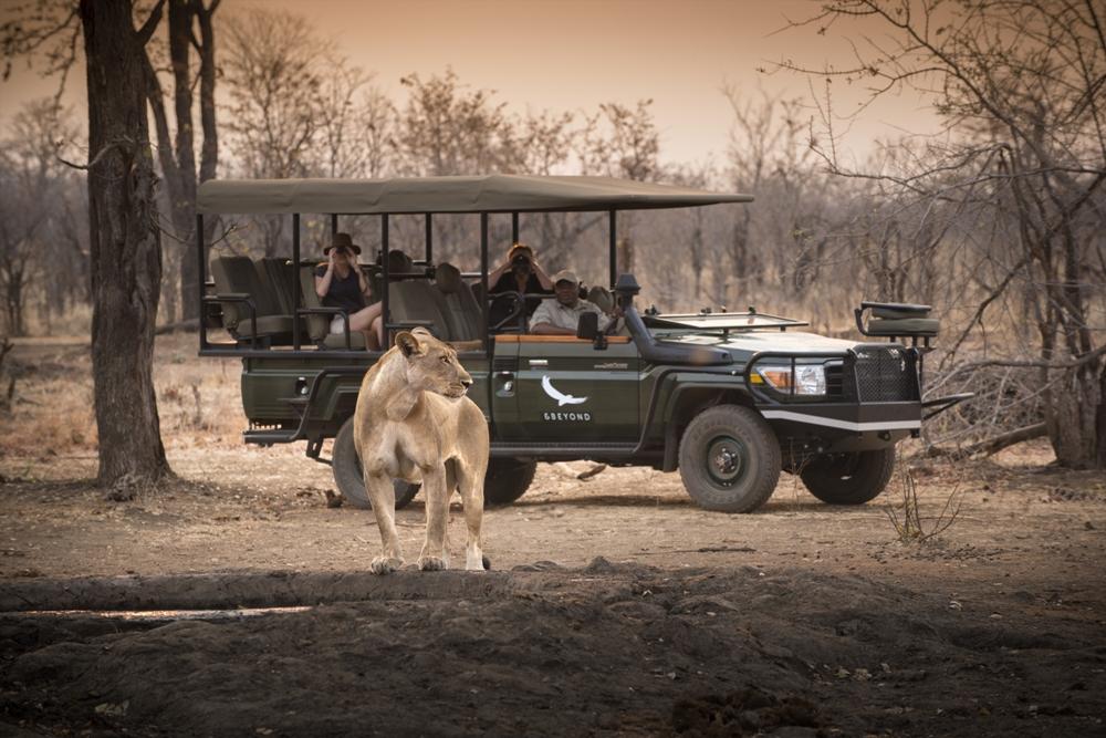 奢華野營/safari/&Beyond/大遷徙/非洲/探險之旅