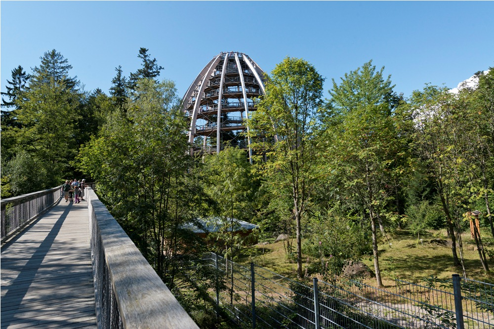 Tree Top Walk in the Bavarian Forest National Park