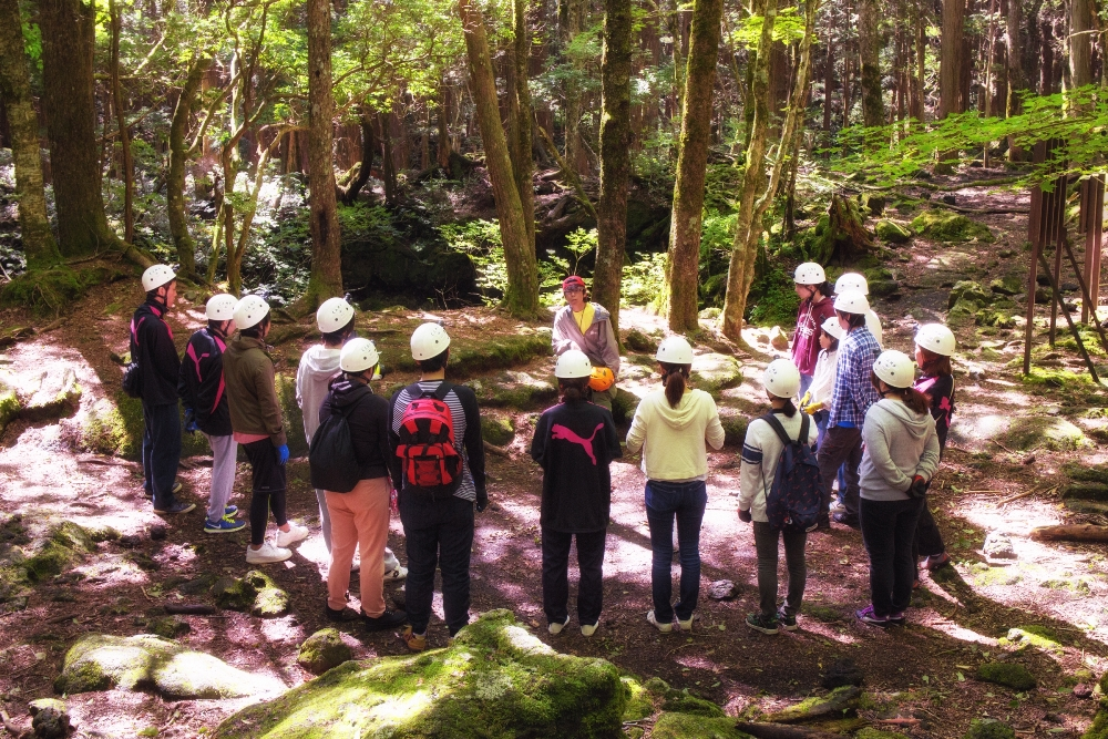 Outback Adventure Tours 青木原樹海