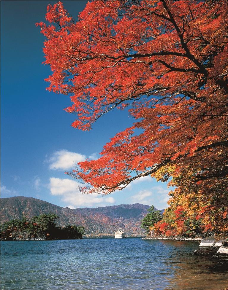 十和田湖/青森縣/日本/當代藝術