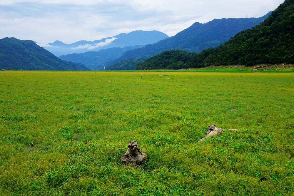石門水庫低水位時可以看見的夢幻大草原