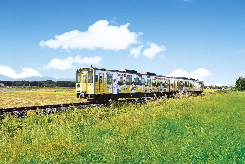 穿越金色油菜花的柯南列車