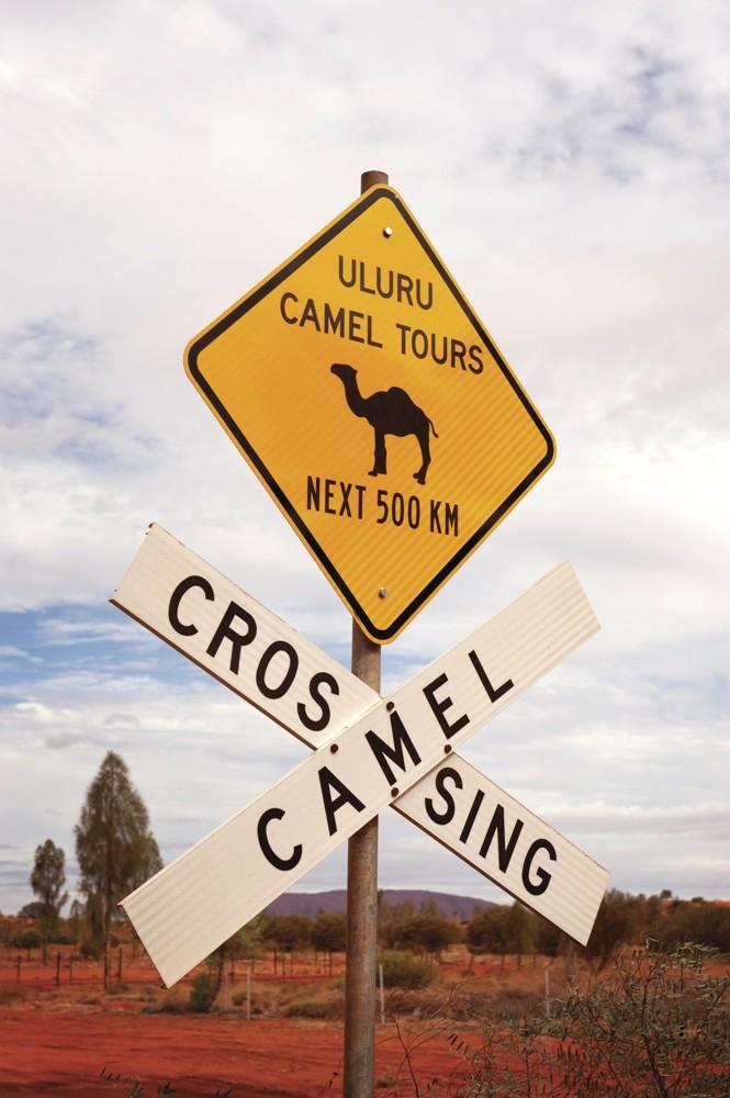 澳州北領地/紅土中心之路/Australia/Red Center Way