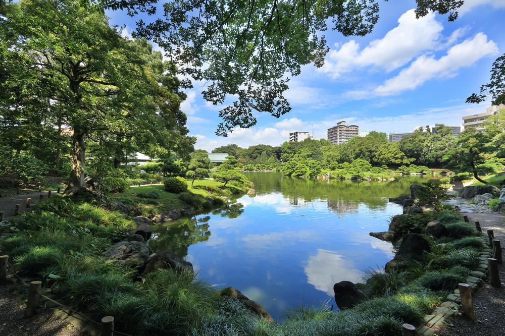 Kiyosumi-shirakawa 清澄白河 /東京/日本