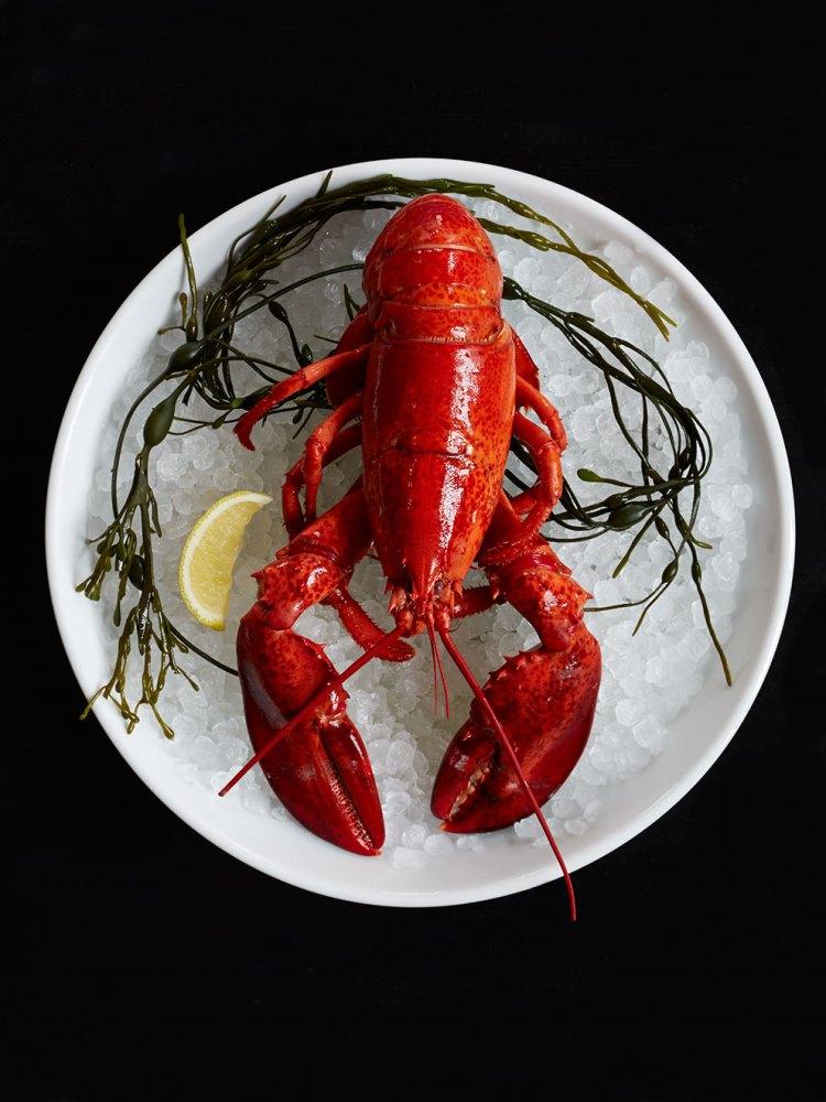 美國/南卡羅萊納州/The Ordinary/牡蠣/酒吧/海鮮/餐廳/BBQ/龍蝦雞尾酒/生蠔