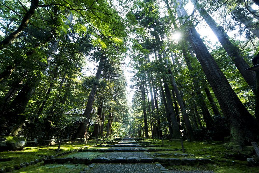 日本/福井縣/越山若水/自然/旅行/白山平泉寺
