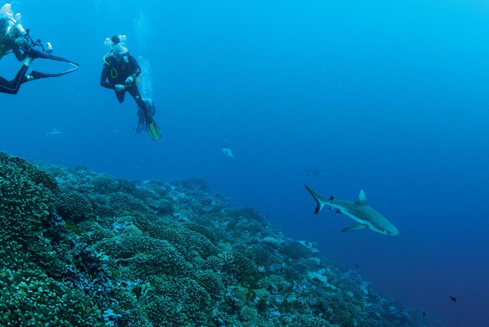 珊瑚礁/世界遺產/Marae Taputapuatea/玻里尼西亞