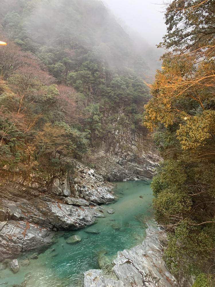 祖谷溪谷/四國/日本
