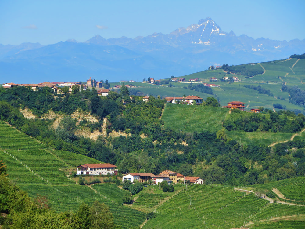 Piedmont Truffle Bike Tour/皮埃蒙/義大利美食/自行車旅行/DuVine