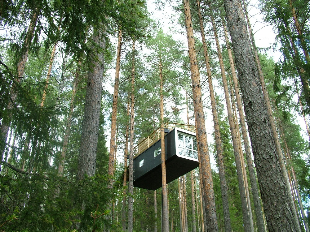 樹屋/Tree Hotel/瑞典