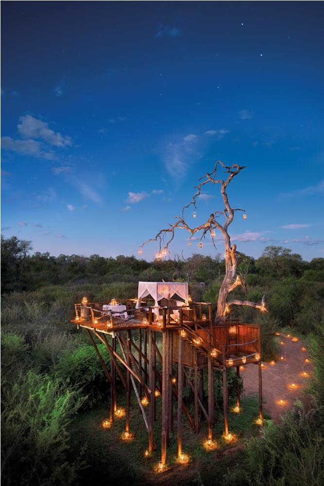 Lion Sands/外觀/樹屋/南非