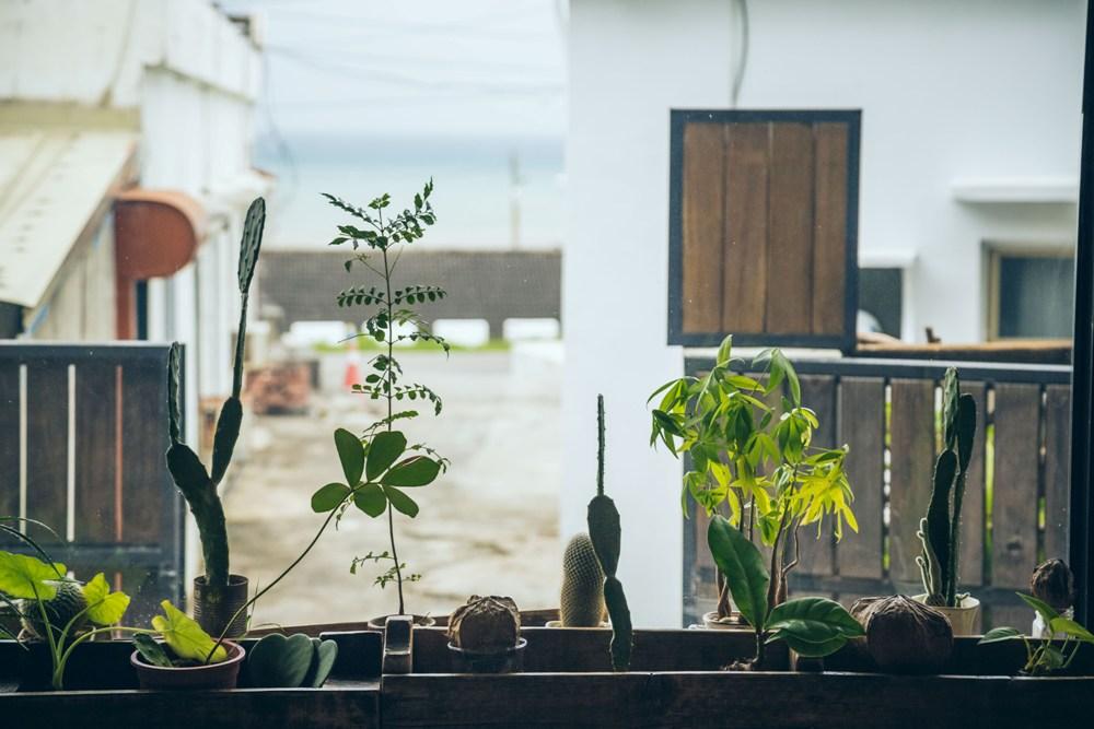 綠色植栽/與自然共生/度假感/鹿過小漁港/屏東滿州/臺灣