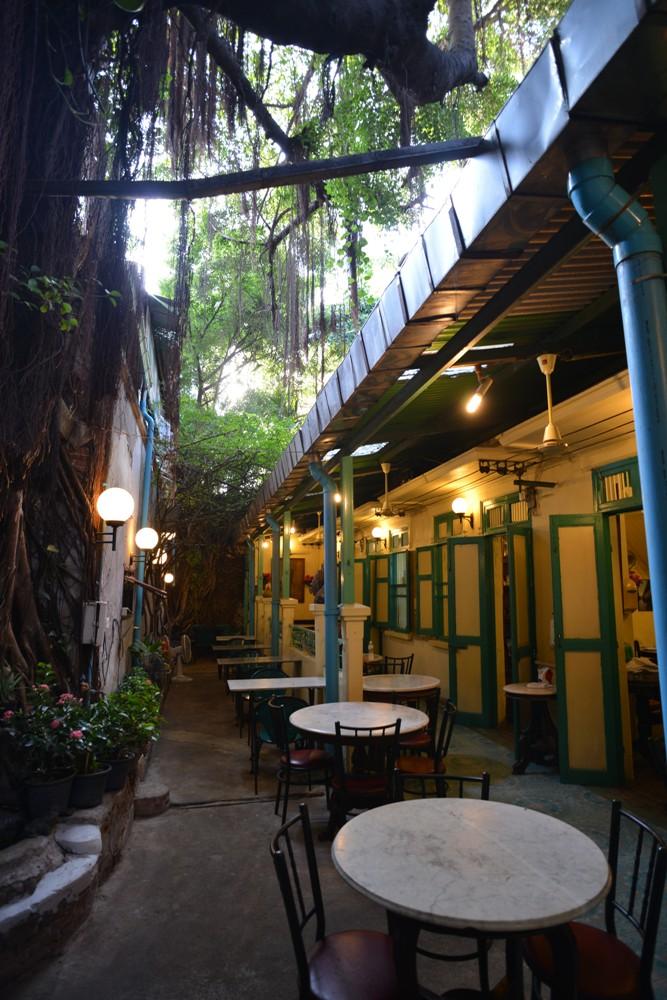 百年榕樹/Homonique/老城區/曼谷/泰國