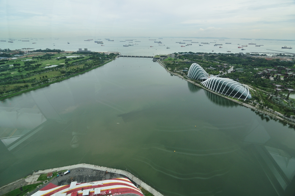 摩天輪景觀/新加坡