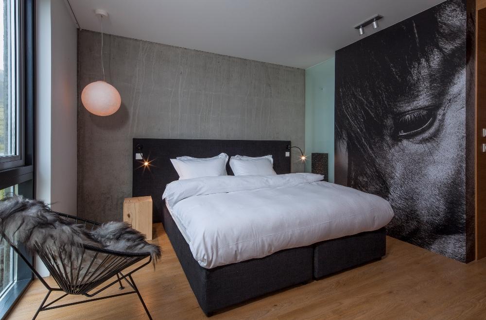 客房/ION Luxury Adventure Hotel/冰島