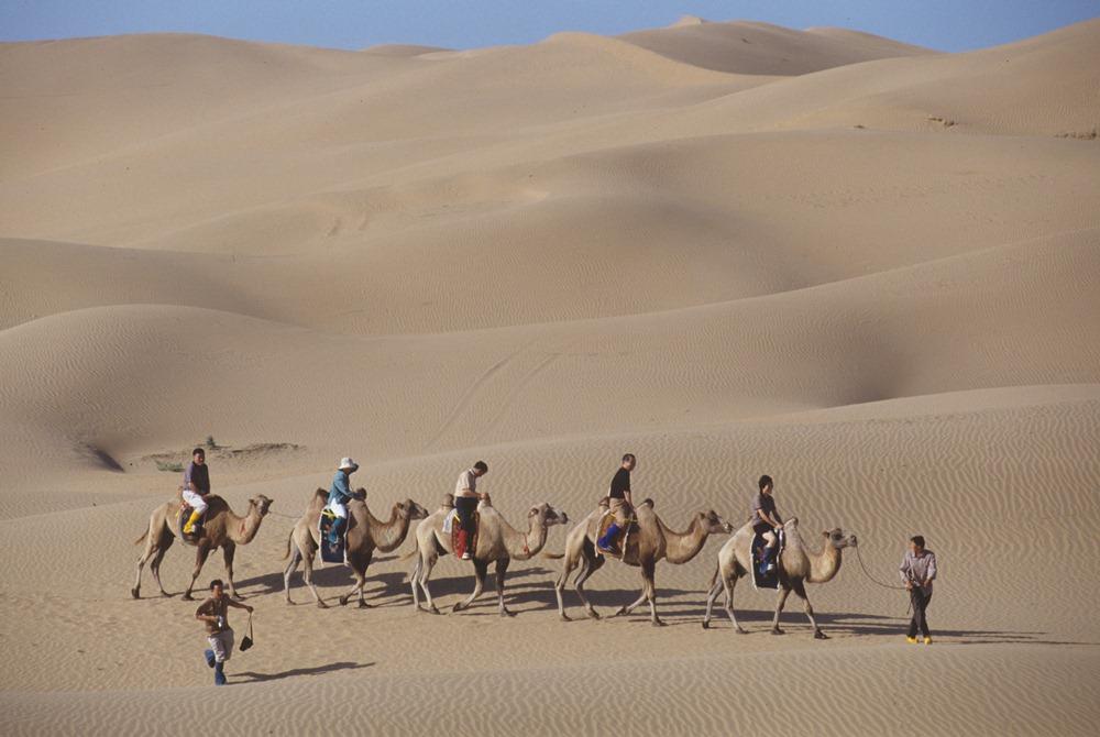 內蒙/沙漠