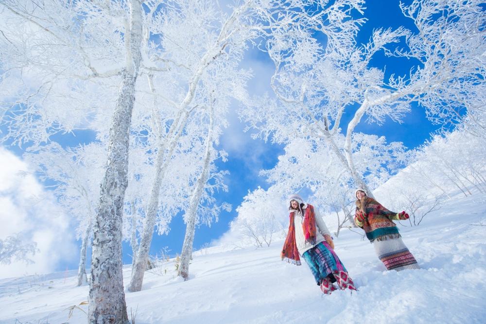 滑雪場/Hoshino Resorts TOMAMU/北海道道央/日本