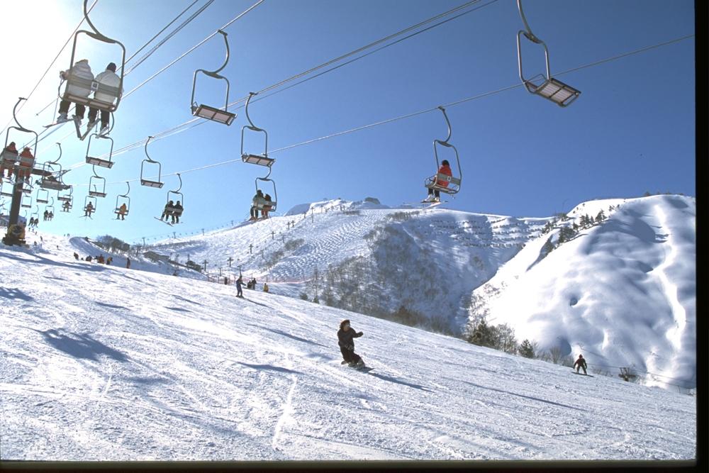 白馬八方尾根滑雪場/長野縣/日本