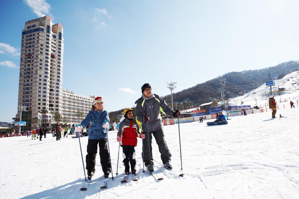 滑雪/鳳凰公園度假村/江原道/韓國