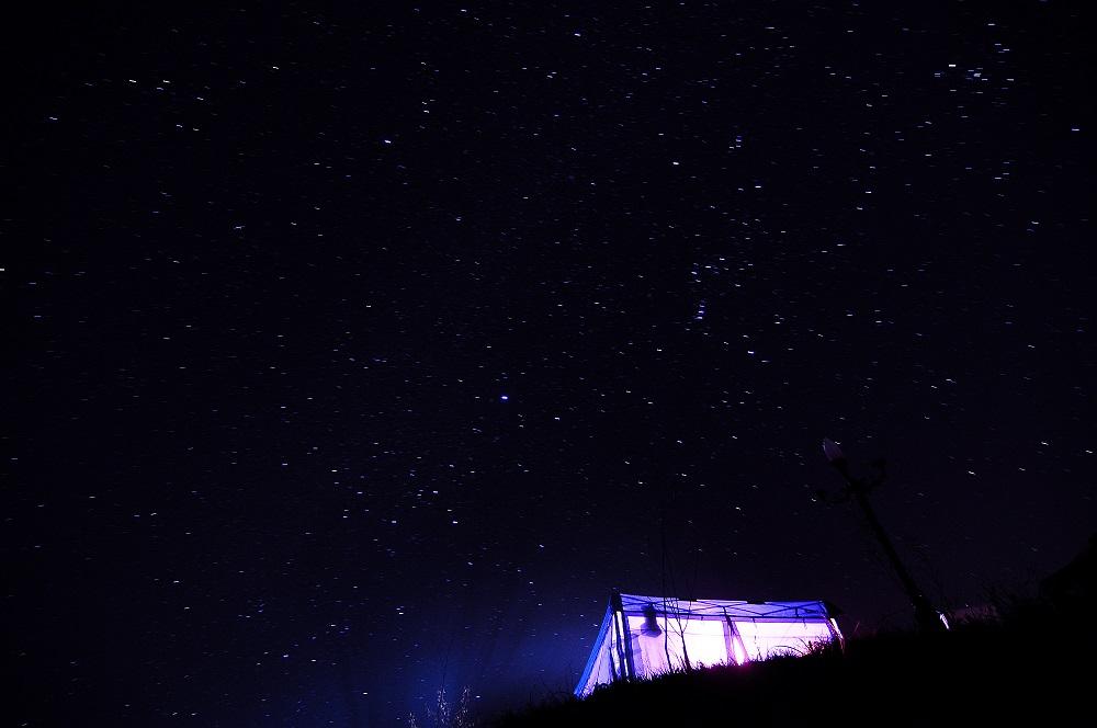 滿天星光/夜景/露營/貓毛