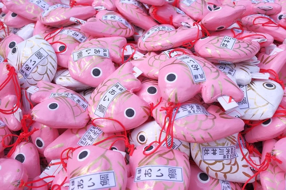 鯛魚籤詩/冰川神社/戀愛神社/川越/日本