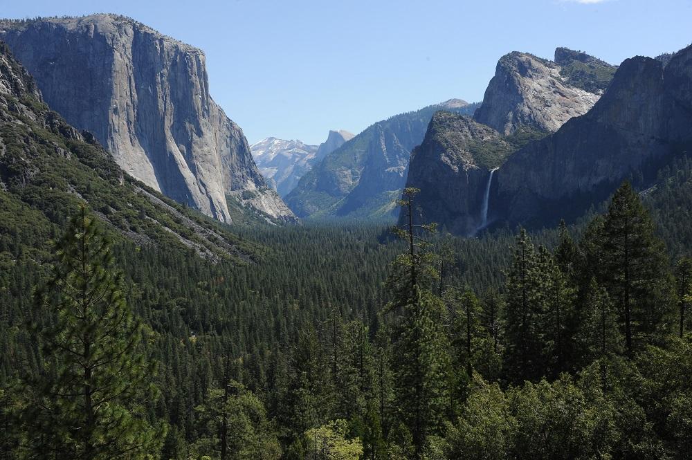 隧道觀景點/優勝美地/加州/美國