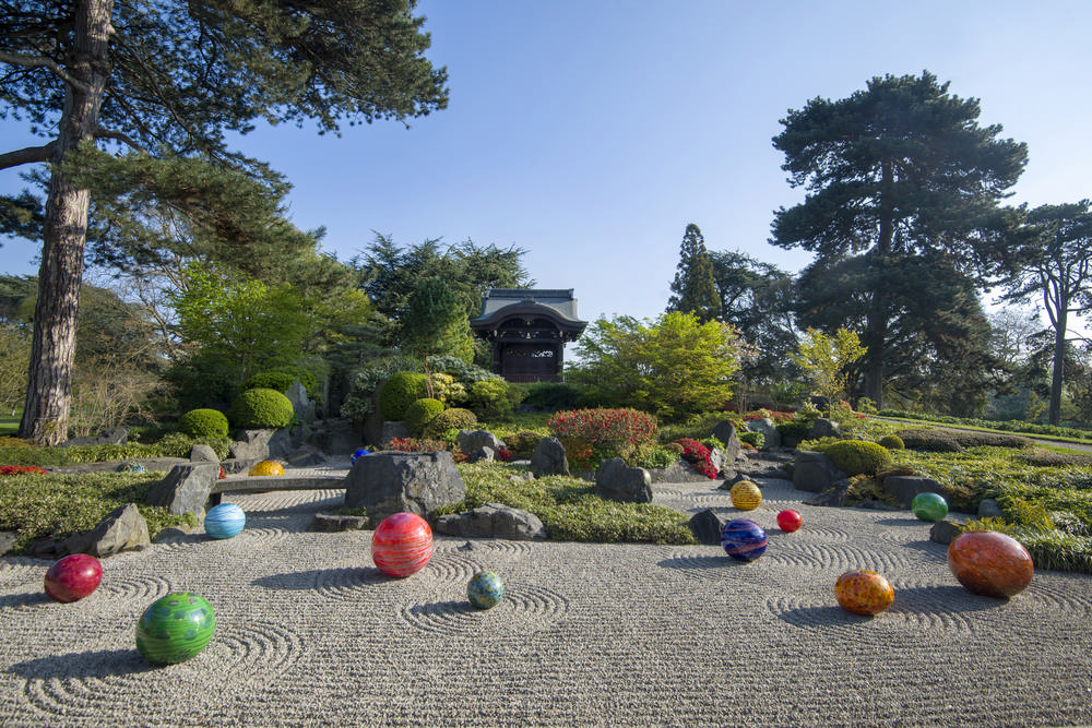 倫敦邱園/玻璃藝術家/奇胡利/Chihuly/Kew Gardens