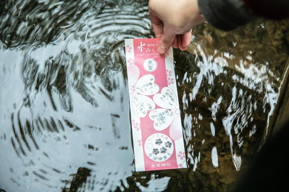 神戶/光之祭典/耶誕節/溫泉鄉