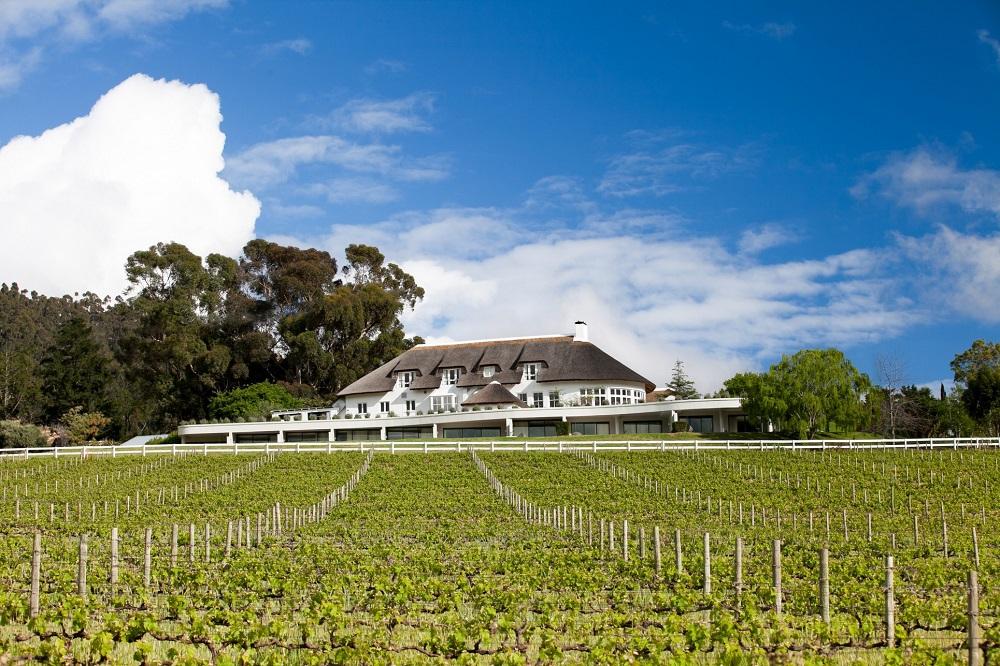 葡萄酒田/Mont Rochelle/開普敦/南非