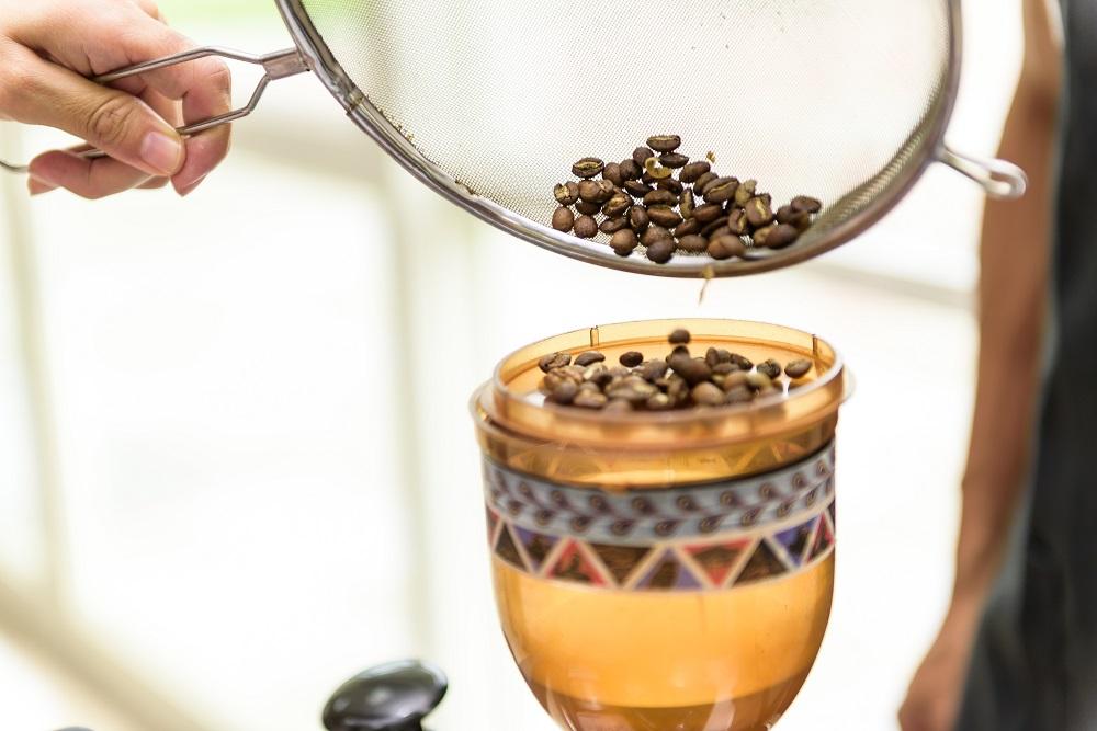 咖啡豆/大武山/泰武/台灣