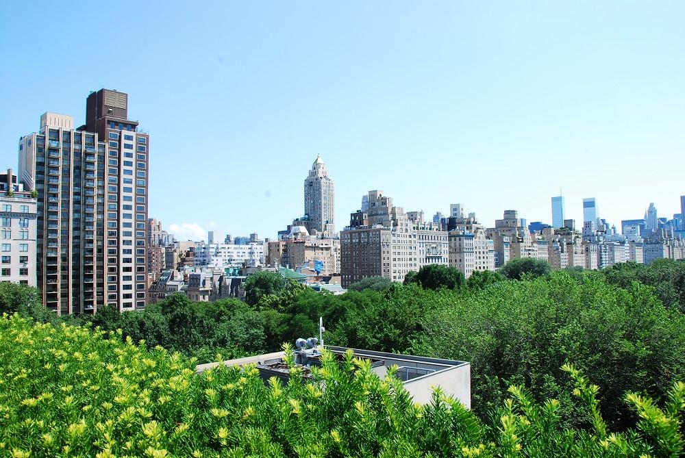 居旅/快樂雲/定點居旅/紐約