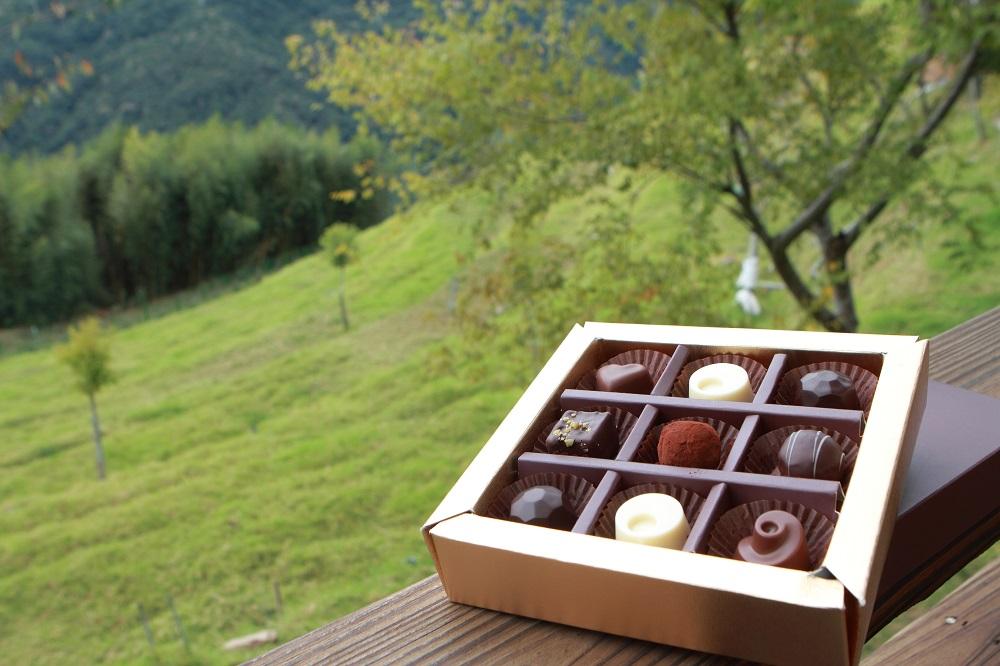 貝卡巧克力莊園/瑞士風格/南投/台灣