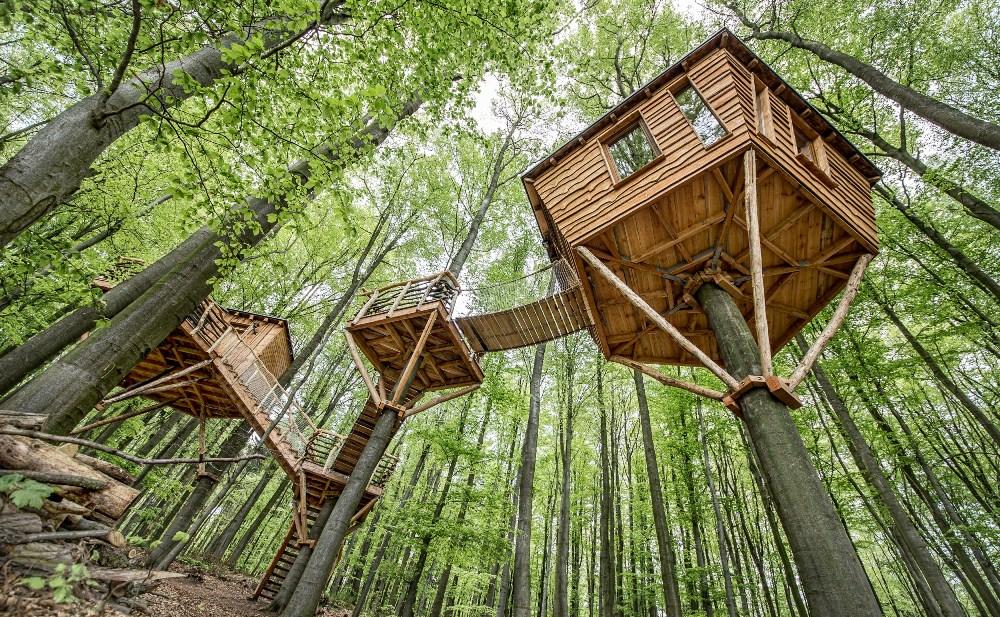 樹屋/Baumhotel Robin's Nest/德國/隱居/森林