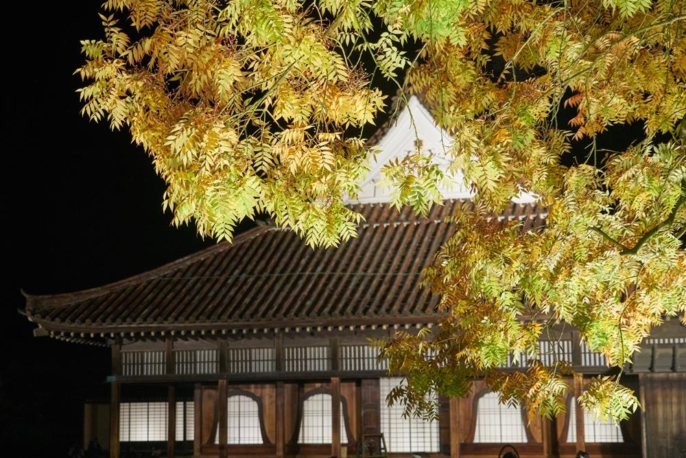日本/倉敷美觀地區/秋季/木造