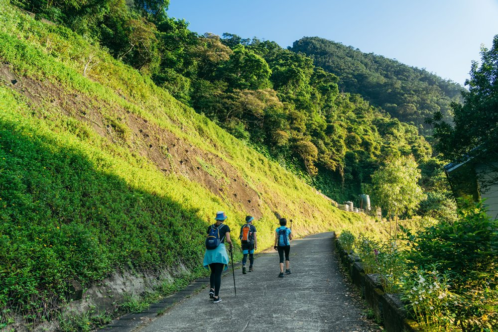 從五峰旗瀑布風景區的停車場出發出發宜蘭抹茶山步道的路途