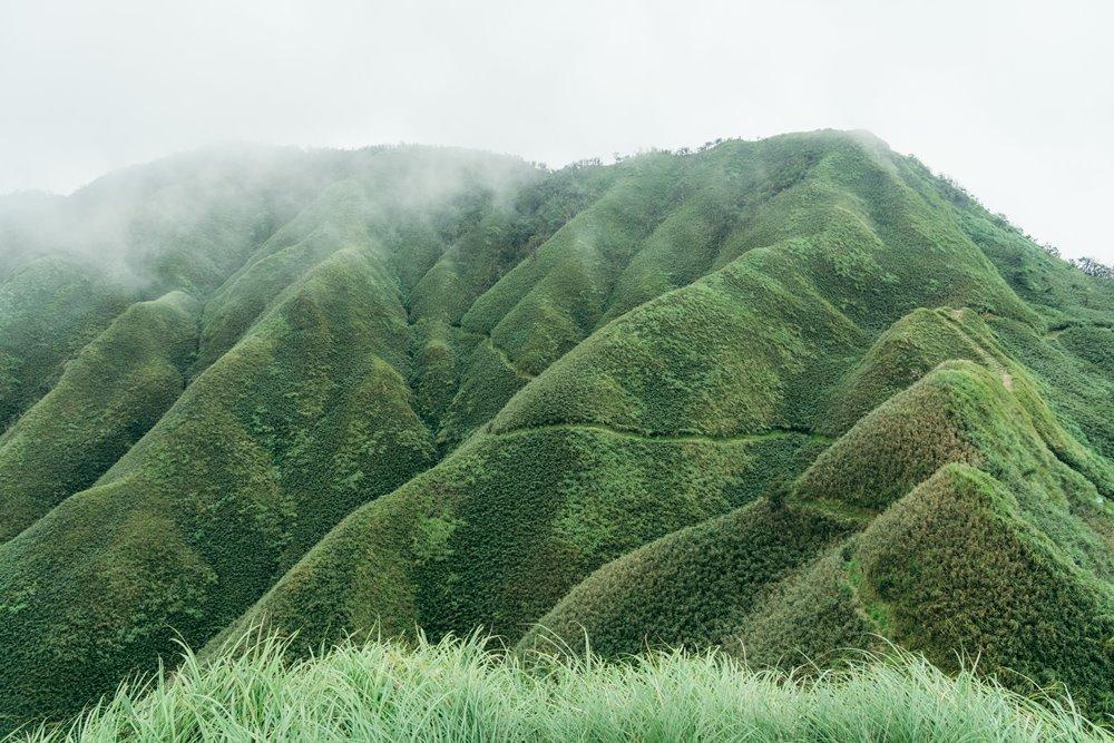 濃霧中的宜蘭抹茶山