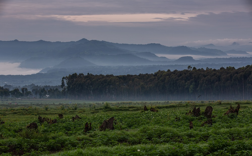 Singita/非洲/盧安達/荒野保護區/火山/森林