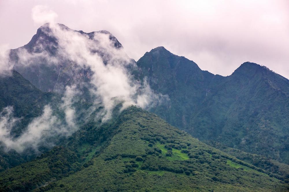 Singita/火山國家公園/盧安達/旅遊/非洲獵遊/火山國家公園