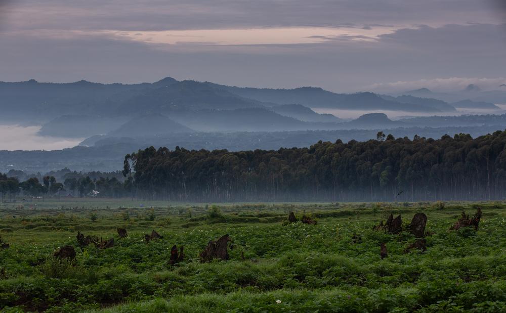 Singita/火山國家公園/盧安達/旅遊/非洲獵遊/東非