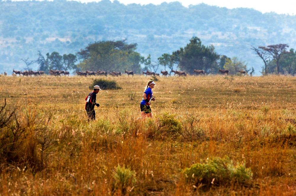 南非Big Five馬拉松/大草原/野生動物/富比士雜誌/十大最值得跑旅的賽事
