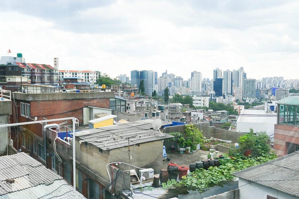 Oriole Cake/首爾/韓國/溫室綠花園/首爾市景