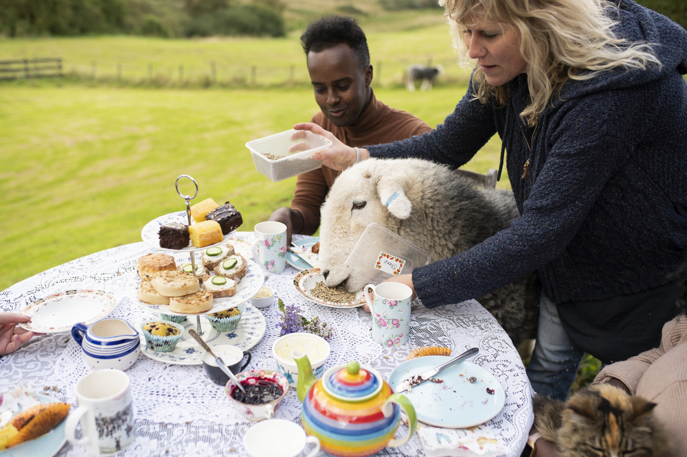 羅蒙湖/英國/綿羊/英式下午茶/airbnb experiences