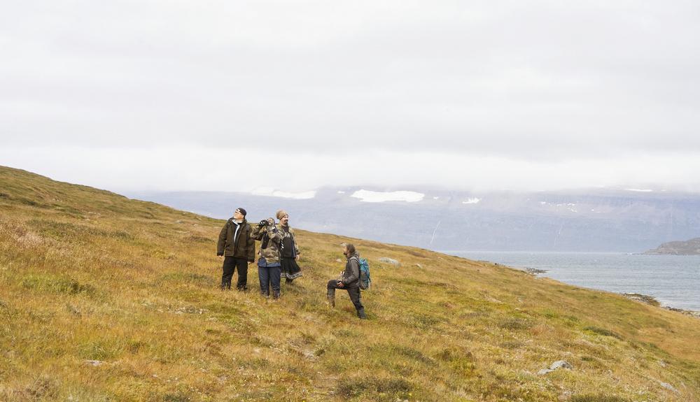 Sudavik/冰島/北極狐/健行/airbnb experiences