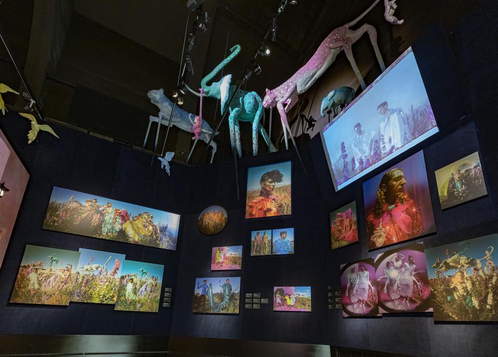 V&A Museum/倫敦/英國/旅遊/Tim Walker/特展/時尚攝影/展廳