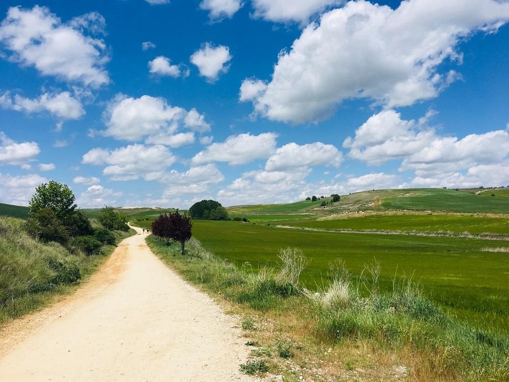 朝聖之路/西班牙/法國/世界最美步道/朝聖/聖年/聖雅各之路/法國之路