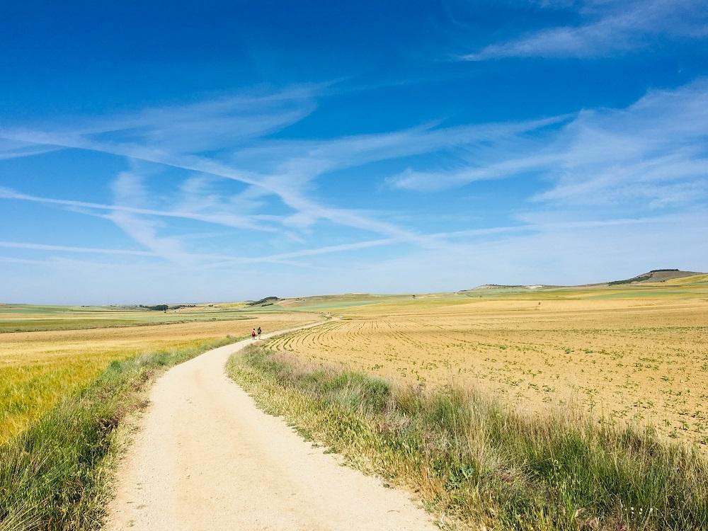 朝聖之路/法國之路/聖雅各之路/朝聖/荒野/大自然