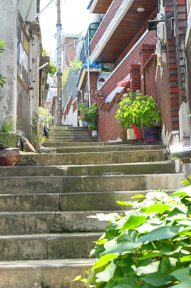 首爾新興市場/韓國/庶民風情/文青聚落/綠沙萍/小巷階梯
