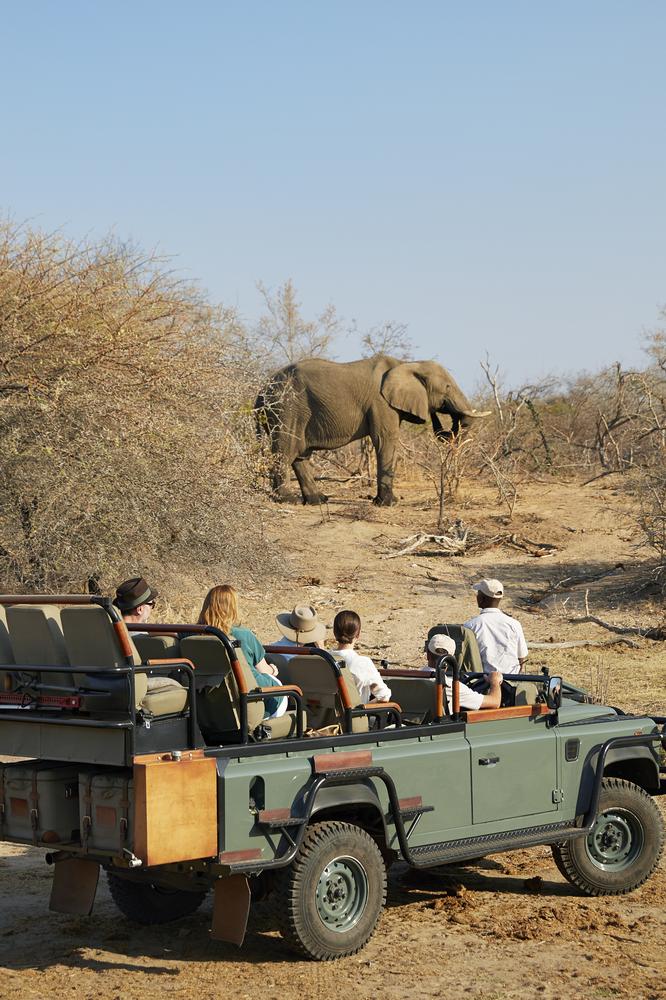 Kubili House/南非/克魯格國家公園/旅遊/非洲獵遊/荒野/野生動物