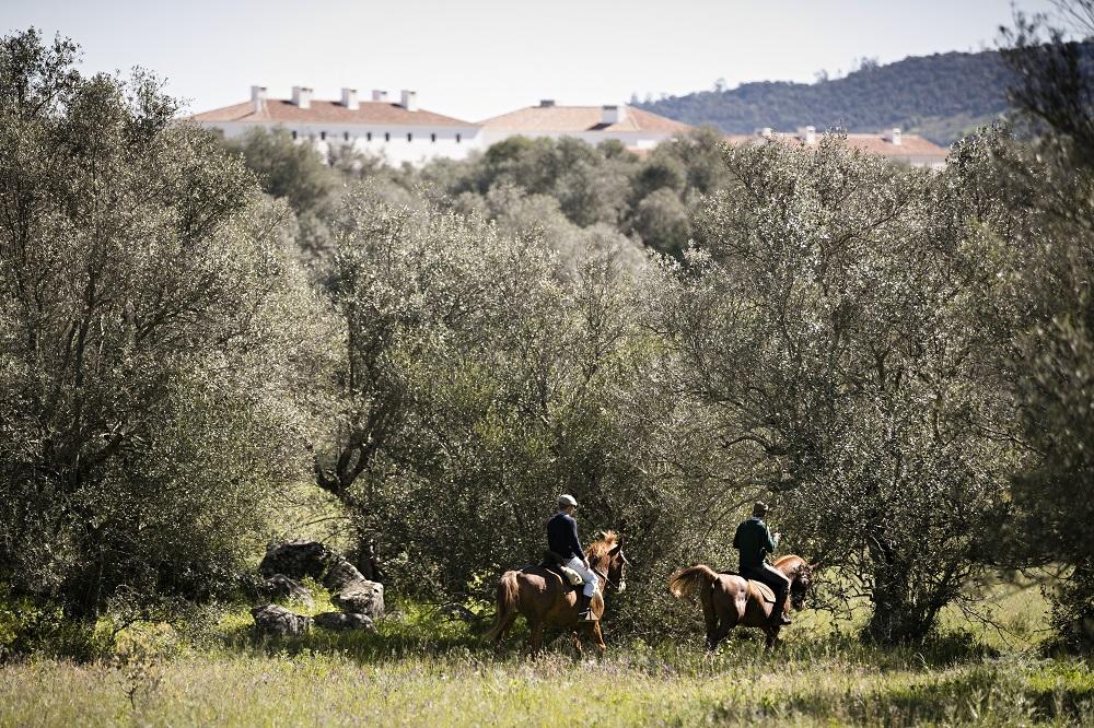 São Lourenço do Barrocal/葡萄牙/葡式農莊/騎馬/ Eduardo Sout